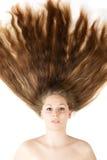 Healthy beautiful long hair closeup Royalty Free Stock Image