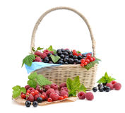 Healthy berries in basket. stock images
