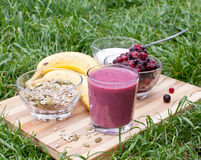 Healthy berries juice Royalty Free Stock Photography