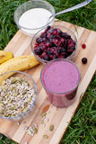 Healthy berries juice Royalty Free Stock Photos