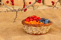 Healthy berries in rustic environment Royalty Free Stock Image
