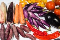 Healthy beta carotene vegetable set Stock Photos