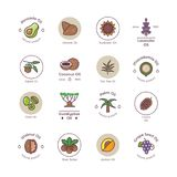 Healthy bio cosmetics oil linear vector logos royalty free illustration