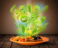 Healthy bio green plate of food Royalty Free Stock Photography