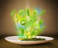 Healthy bio green plate of food. On grungy background Royalty Free Stock Image