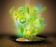 Healthy bio green plate of food. On grungy background Stock Photos