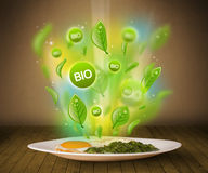 Healthy bio green plate of food Stock Images