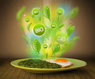 Healthy bio green plate of food Royalty Free Stock Photos