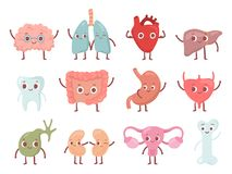 Free Healthy Biological Organ. Smiling Lung, Happy Heart And Funny Brain. Smile Organs Cartoon Isolated Character Vector Set Stock Photos - 132543383