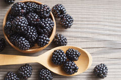 Healthy blackberries in bowl on wooden background. Stock Image