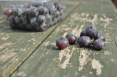 Healthy blueberries Stock Photo