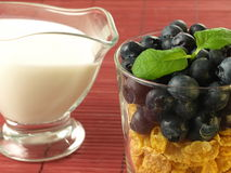 Healthy blueberries breakfast Stock Images
