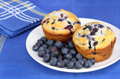 Healthy blueberries and muffins Stock Photos
