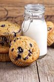 Healthy blueberry banana muffins Royalty Free Stock Photography