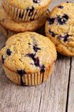 Healthy blueberry banana muffins Royalty Free Stock Images
