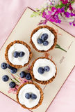 Healthy blueberry tarts. Blueberry tarts with muesli shells and yoghurt based filling, a healthy dessert treat alternative royalty free stock photos