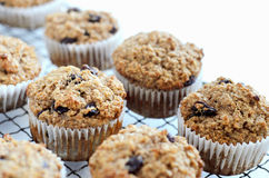Healthy bran muffin Stock Photography