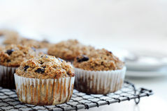 Healthy bran muffin Royalty Free Stock Photos