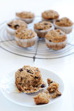 Healthy bran muffin Royalty Free Stock Image