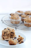 Healthy bran muffin Stock Images
