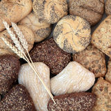 Healthy Bread Roll Selection. Healthy bread roll assortment with wheat sheaths forming an abstract background Stock Image