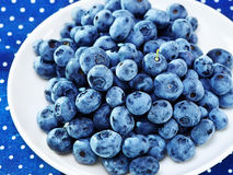 Healthy breakfast with berries( blueberry) on textile background Stock Photography