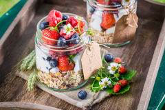 Healthy breakfast with berry fruits and yogurt in sunny day Royalty Free Stock Photography