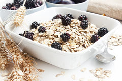 Healthy breakfast with blackberries Stock Photography