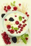 Healthy breakfast: bowl of cerial with yogurt or milk Royalty Free Stock Photo