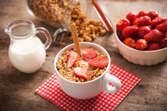 Healthy breakfast. Bowl of milk with granola. Royalty Free Stock Photo