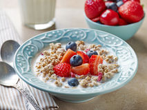 Healthy breakfast, bowl of muesli with milk Stock Photography