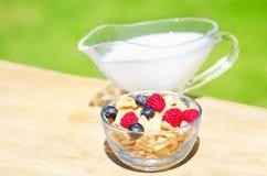 Healthy breakfast with cereals and berries. Healthy breakfast with cereals, blueberry, raspberry and milk. Selective focus Stock Photos