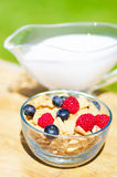 Healthy breakfast with cereals and berries Stock Images