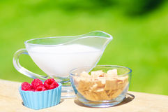 Healthy breakfast with cereals and berries. Healthy breakfast with cereals, raspberry and milk. Selective focus Stock Photos