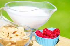 Healthy breakfast with cereals and berries. Healthy breakfast with cereals, raspberry and milk. Selective focus Stock Photo