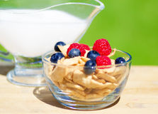 Healthy breakfast with cereals and berrys. Healthy breakfast with cereals, blueberry, raspberry and milk. Selective focus Royalty Free Stock Photos