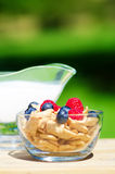 Healthy breakfast with cereals and berrys. Healthy breakfast with cereals, blueberry, raspberry and milk. Selective focus Royalty Free Stock Images