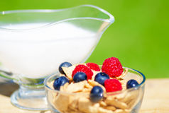Healthy breakfast with cereals and berrys. Healthy breakfast with cereals, blueberry, raspberry and milk. Selective focus Stock Photo