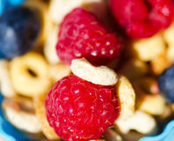 Healthy breakfast with cereals and berrys. Healthy breakfast with cereals, blueberry, raspberry. Selective focus Stock Image