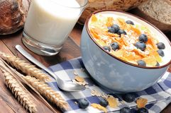 Healthy breakfast with cereals and blueberries Royalty Free Stock Photo