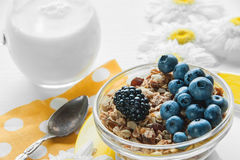 Healthy Breakfast cereals: muesli with fruits and berries blueberries, blackberries and dairy products. Selective focus. The horizontal frame Royalty Free Stock Photos