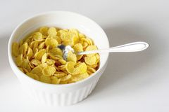 Healthy breakfast with cornflakes and milk over white background stock image