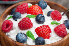 Healthy breakfast cottage cheese with berries and basil Royalty Free Stock Photos