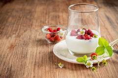 Healthy breakfast cup of fresh milk yoghurt with Royalty Free Stock Photography