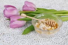 Healthy breakfast. Stock Image