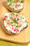 Healthy breakfast diet concept. Whole grain bread with curd and radishes and frresh cress Stock Images