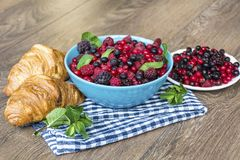 Healthy breakfast. French Croissant and  Berries. Healthy Breakfast with forest fruits and french croissant Stock Image
