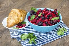 Healthy breakfast. French Croissant and  Berries. Healthy Breakfast with forest fruits and french croissant Royalty Free Stock Photo