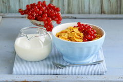 Healthy breakfast granola corn with red currant Royalty Free Stock Image