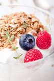 Healthy breakfast. Granola with pumpkin seeds, honey, yogurt, fresh berries . Stock Photos